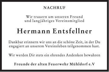 Zur Gedenkseite von Hermann